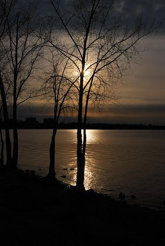 sunset sky sun ontario canada tree water clouds river nikon ottawa ottawariver 24mmf28 d80