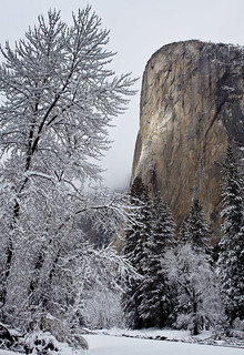 Winter light on El Capitan, Yosemite National Park