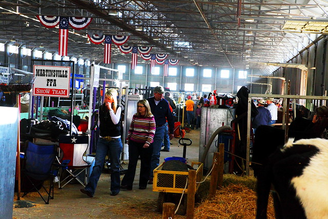 Cattle Show Barns http://www.flickr.com/photos/chris_lanzarotti/5394140257/