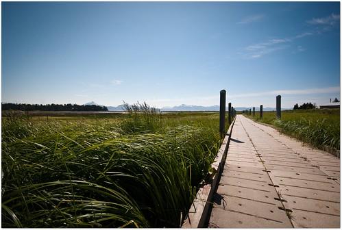 travel vacation sky nature alaska landscape nikon path homer boardwalk waters grasses beautifulday bishopsbeach tnwaphotography