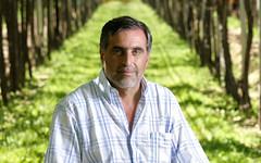 Referentes del sector vitivinícola esperan mejores condiciones para el próximo año