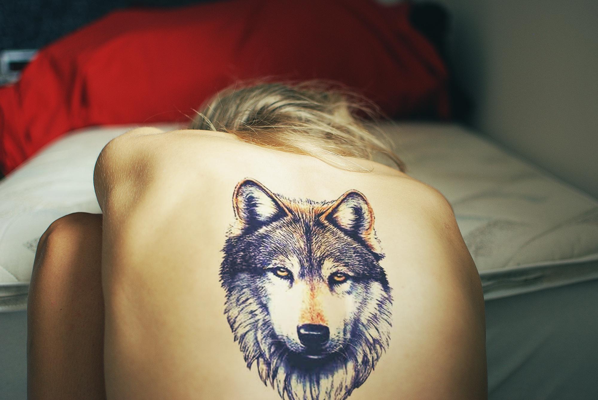 Татуировки волка на спине 2 фотография
