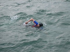 open water swimming, swimming, sports, sea, wind wave, extreme sport, wave, water sport,