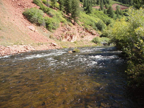 Fly fishing the frying pan river colorado day 1 for Best fly fishing in colorado