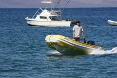 dinghy, vehicle, sea, skiff, boating, motorboat, inflatable boat, rigid-hulled inflatable boat, watercraft, boat,
