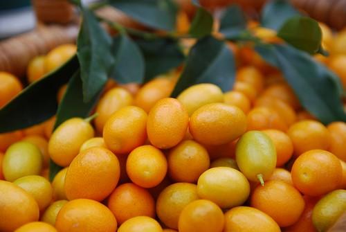 Cumquats, leaves