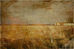 Landscapes from farm park south Milan (exhibition)