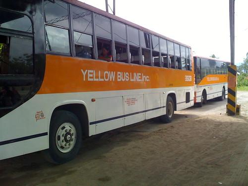 yellowbusline