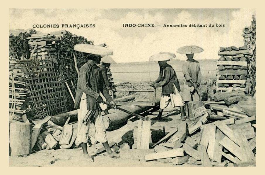 Annamites débitant du bois