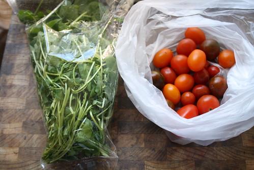 watercress & baby tomatoes