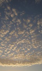 cumulus, cloud, sunlight, evening, daytime, morning, sky, dusk, sunset, afterglow,