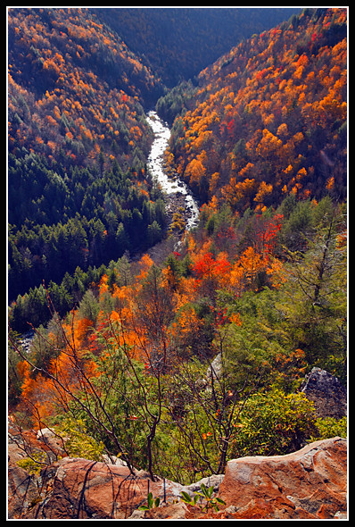 West virginia fall foliage 2010 flickr photo sharing for West fall