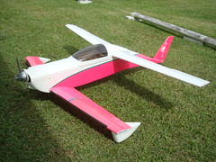 monoplane(0.0), automotive exterior(0.0), light aircraft(0.0), glider(0.0), toy(0.0), model aircraft(1.0), aviation(1.0), airplane(1.0), wing(1.0), vehicle(1.0), radio-controlled aircraft(1.0), radio-controlled toy(1.0), propeller(1.0), canard(1.0), motor glider(1.0), ultralight aviation(1.0),