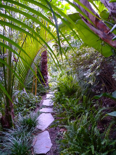 One of many lush pathways