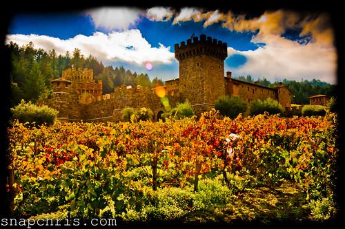Autumn : Napa Tuscan Castle and vineyard