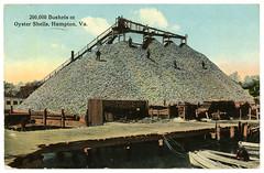 Hampton_VA_Oyster_Shells_c_1913