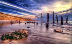 Sensational Seaside Scene