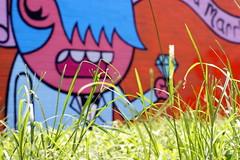 Proposal Depth of Field  - Houston Graffiti - by ACK
