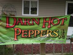 DHP Banner