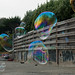 Small photo of Bubbles in Bolinas
