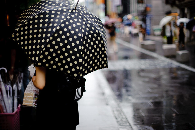 """polka dot stick umbrella"" - Shopping.com"