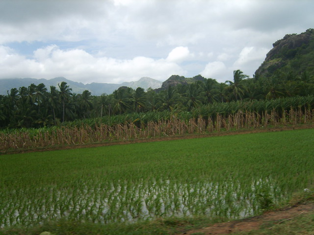 Header of Nagercoil