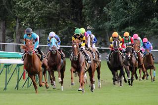 SAPPORO racetrack. - 無料写真検索fotoq
