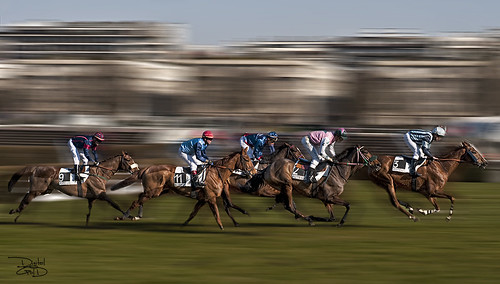 Longchamp Horse Racecourse- Paris, France - Hippodrome de Longchamp