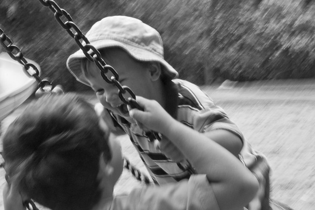 533:1000 A tire swing is more fun when shared with a brother