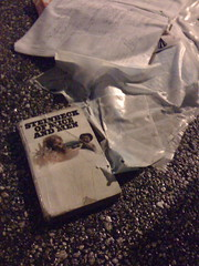 discarded steinbeck
