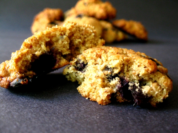 Blueberry Lemon Oatmeal Cookies