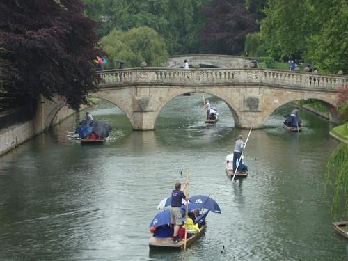 """No hay mejor forma de ver todos los """"backs"""" de las universidades que en Góndola, lo que te ahorras en pagar por entrar por la universidad lo puedes invertir en un paseo en barca por el río. cambridge - 5067007927 ec5373e87f - Cambridge (England) y sus rincones para turistas"""