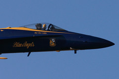 Fleet Week 2010 Air Show