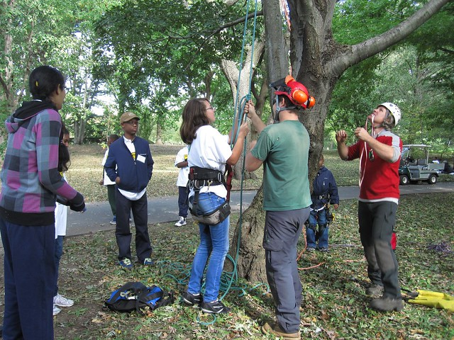 Green Horizon students learn the basics of tree climbing and pruning.