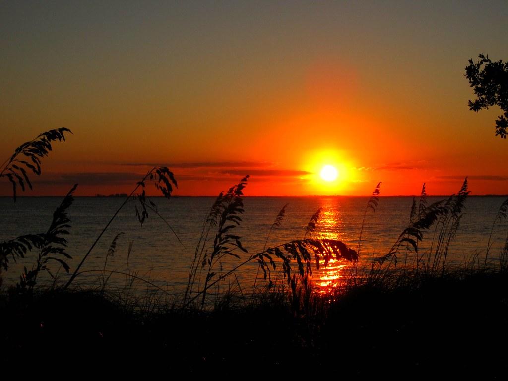 Silhouettes, Sunset - Key Biscayne, FL