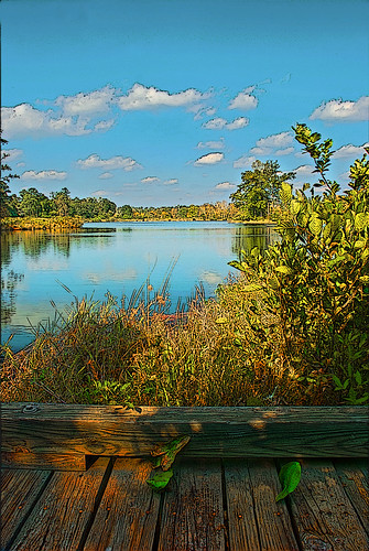 bridge lake reflection water georgia country rustic hdr photoshopelements henrycounty nikond80 countryscenery panolamountainstatepark