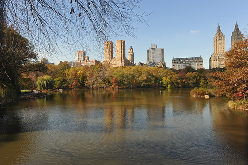 AUTUMN IN CENTRAL PARK  2010   -   Manhattan, New York City    -   11/03/10