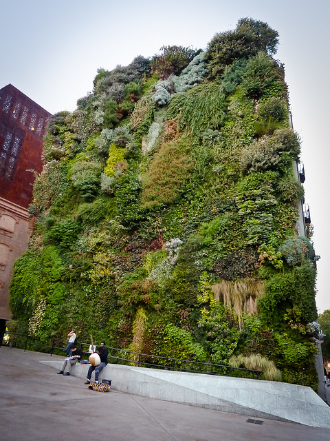 Vertical garden contiguous to art gallery caixaforum jar for Jardin vertical madrid
