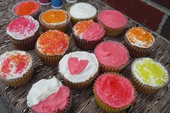 cuppies.