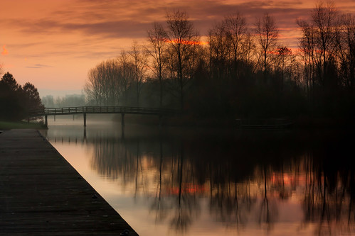 nature netherlands fog sunrise natuur almere zonsopgang project50 twittographers pwwinter