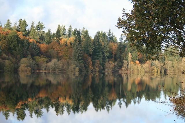 Loch Ken mirrors
