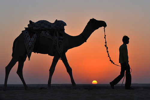 sunset sun rajasthan thardesert mygearandme rememberthatmomentlevel1 sunandcamel sunandyouth