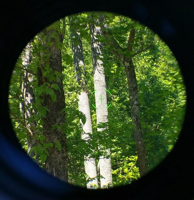 3x30 & 45 degree sights4