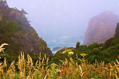 california fog pacificcoast coth supershot abigfave anawesomeshot impressedbeauty flickrdiamond nejmantowicz dragondaggerphoto canong974444mm