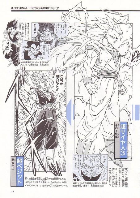 Daizenshuu_02_page113