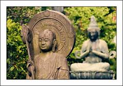 Double Buddha