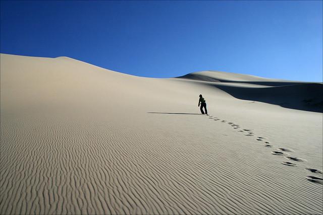 20080527   Khongoryn Els Sand Dunes, Gobi Desert, Mongolia 009