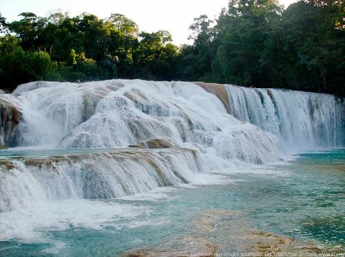 Chiapas 2008