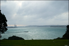 View on Auckland Bay from the Michael Savage Memorial Park