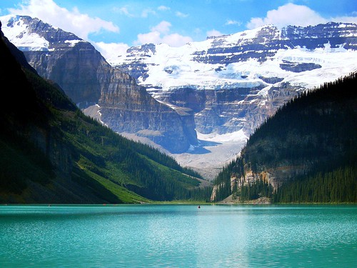 montagne lago alberta wonderland paesaggio boschi fleursetpaysages